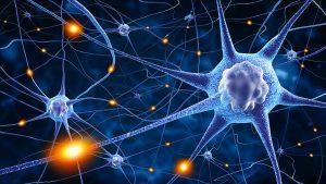 Stillisiertes Bild von diversen Nervenzellen und ihren Nervenbahnen bei der Weiterleitung von Impulsen und Signalen
